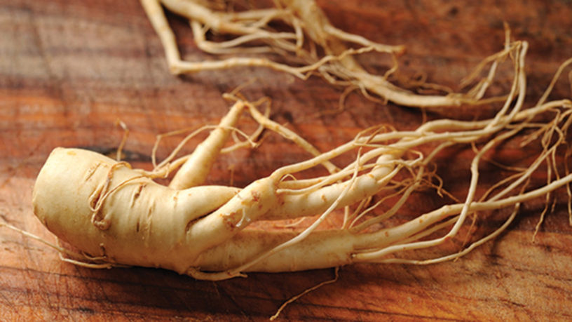 6-Korean-ginseng-benefits-|-Divine-medicine-if-used-with-the-right-subjects
