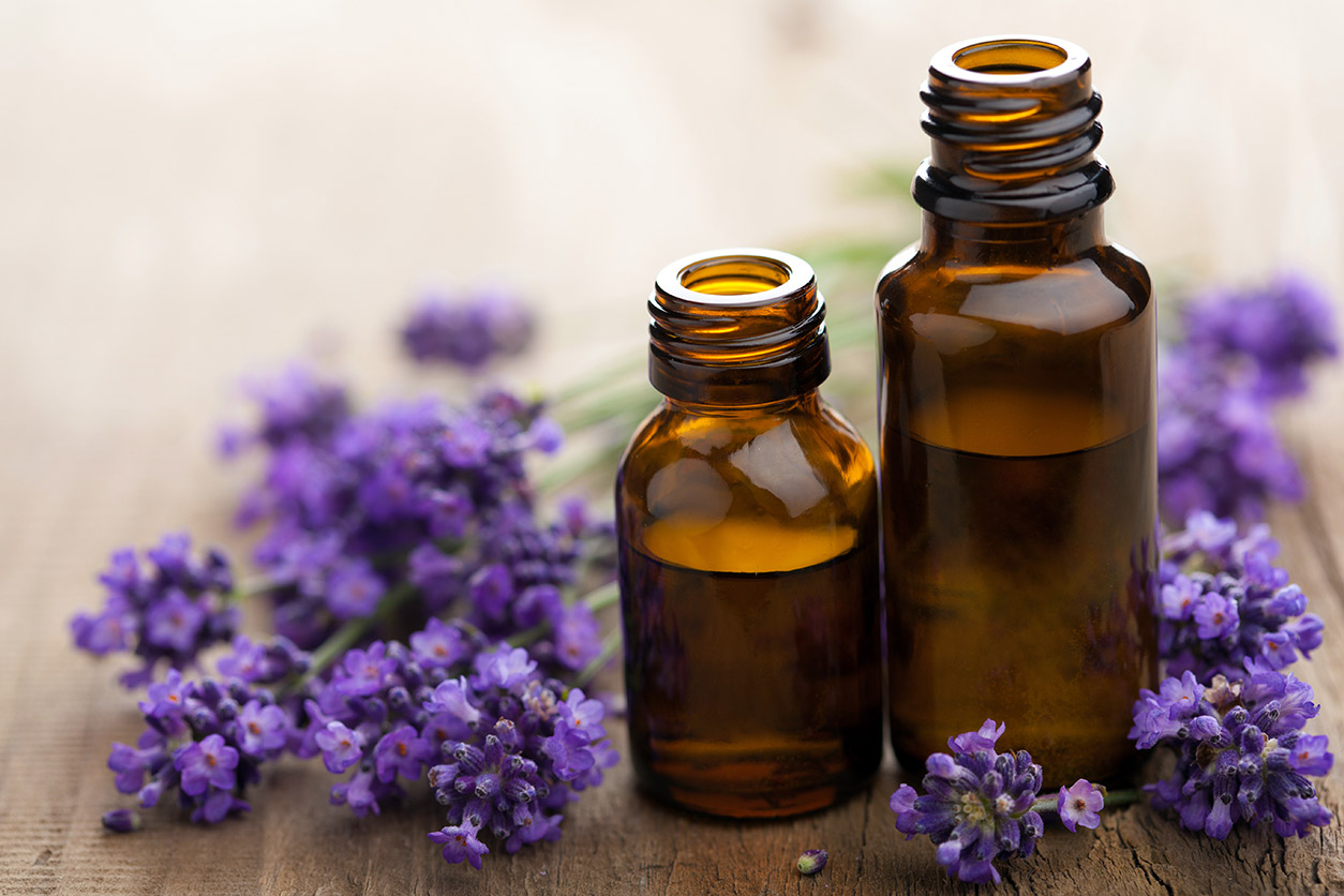 Natural-mosquito-control:-Lavender-essential-oil