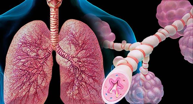 Hyssop-health-benefits:-Support-asthma-treatment
