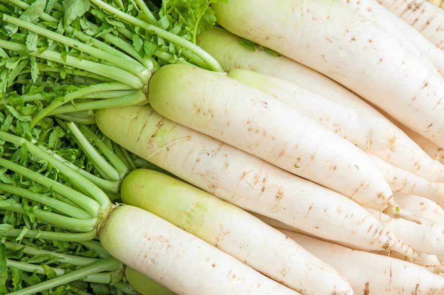best-foods-to-treat-gout-Turnip