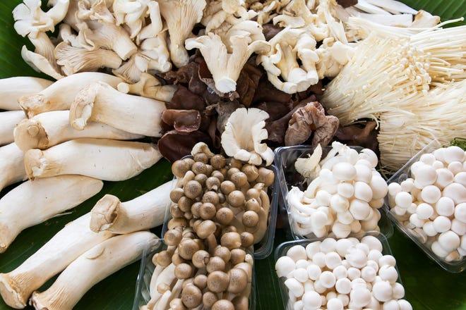 Cholesterol-lowering-Foods-2