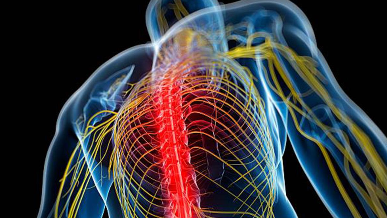 Mugwort-essential-oil-benefits:-Treat-nerve-pain
