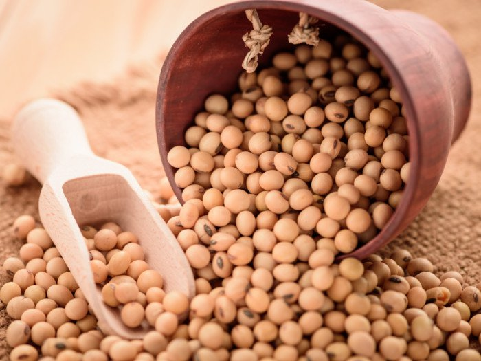 Foods-high-in-estrogen:-Soybean
