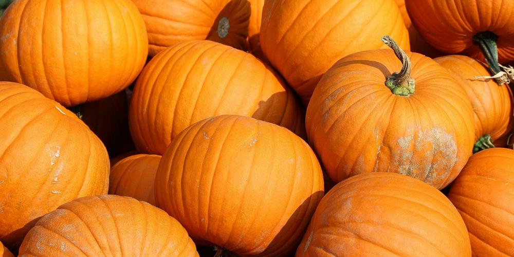 Best-foods-to-eat-for-Arthritis:-pumpkins