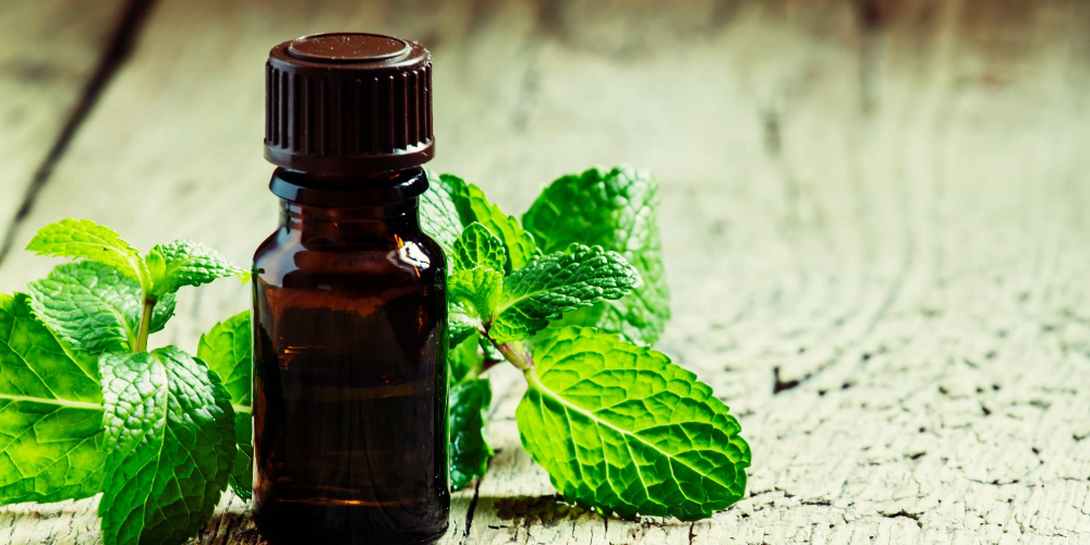 Natural-remedies-for-fever:-Use-essential-oils