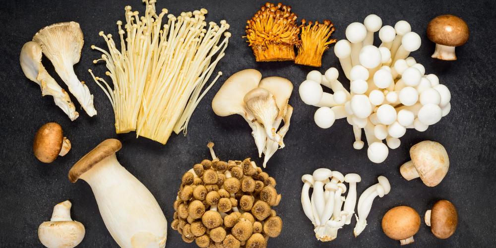 Bone-strengthening-foods:-Mushrooms