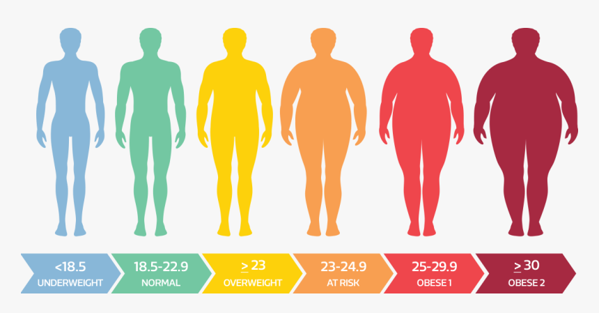 The-safest-way-to-lose-weight-at-home-BMI