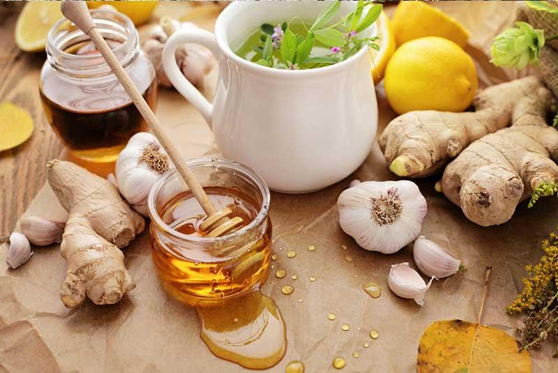 Top-6-natural-antibiotics-herbs