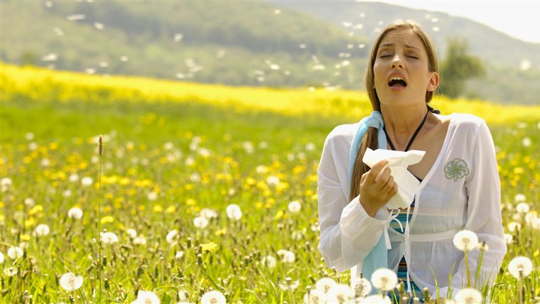 The-cause-of-Weather-allergies-pollen
