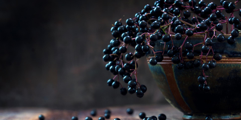 Top-4-health-benefits-of-Elderberry-|-The-natural-remedy-for-the-flu