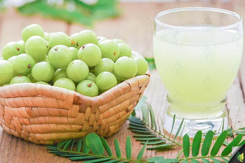 Top-Amla-Berry-benefits