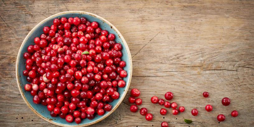 Top-3-Cranberry-health-benefits-|-Herbal-treatment-of-urinary-tract-infections