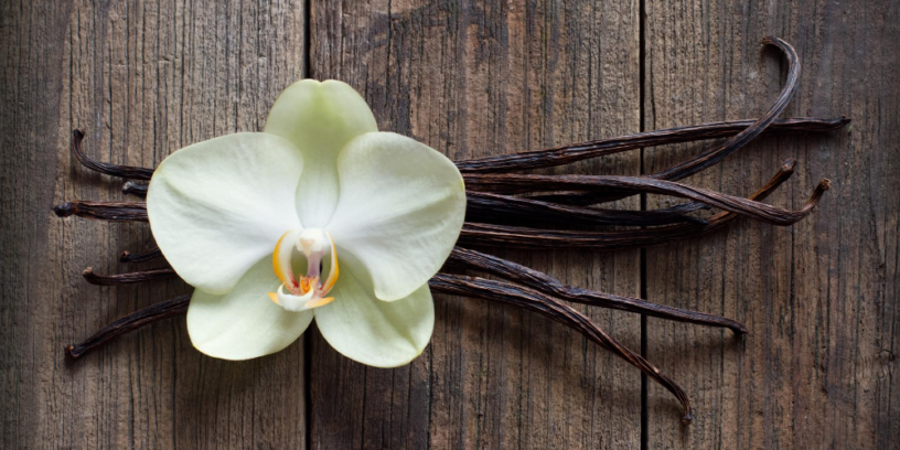 Top-5-vanilla-essential-oil-benefits