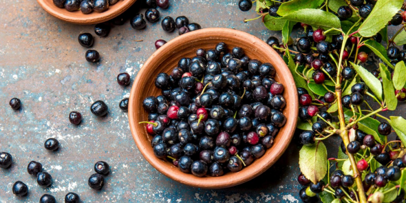 Top-4-Maqui-berry-benefits-|-The-world's-highest-source-of-antioxidants