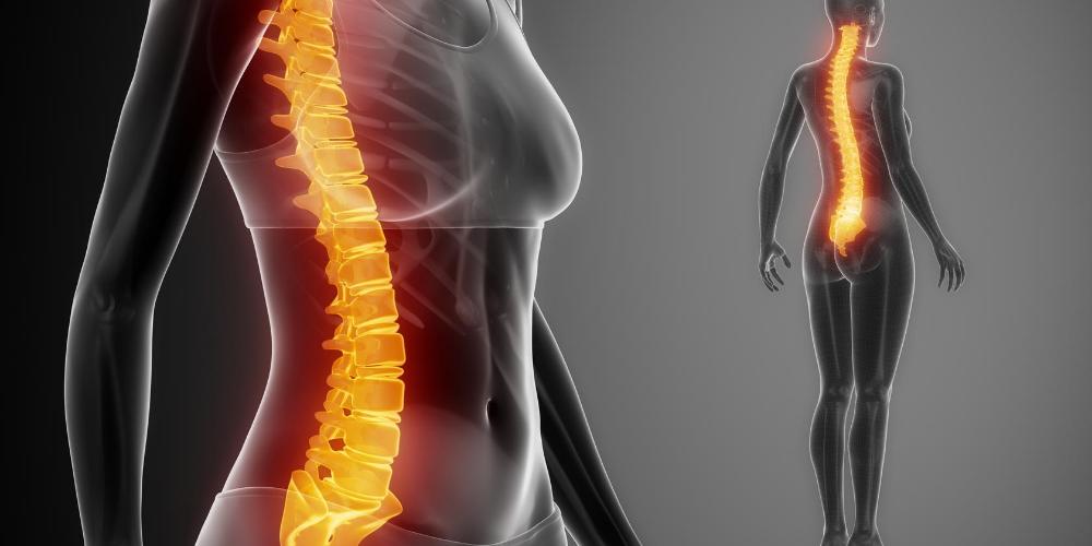 Collagen-health-benefits:-Prevent-bone-loss