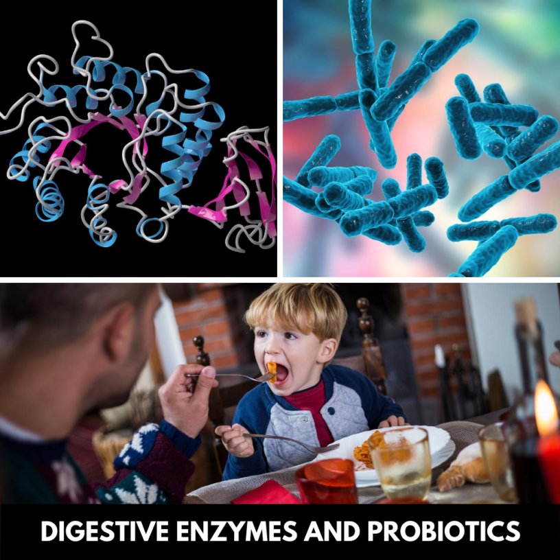 How-to-use-Digestive-Enzymes-and-Probiotics-for-Children?